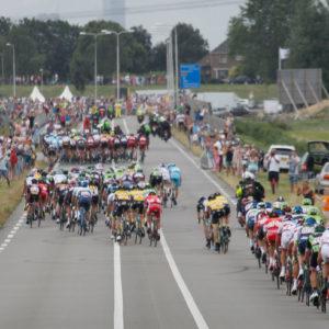 Windstaffeln bei der Tour de France 2015 (Foto: Roth&Roth)